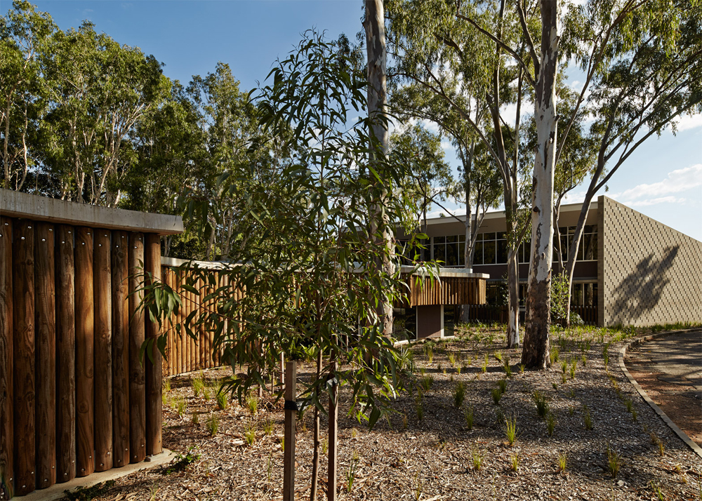 Australian-childrens-centre_7