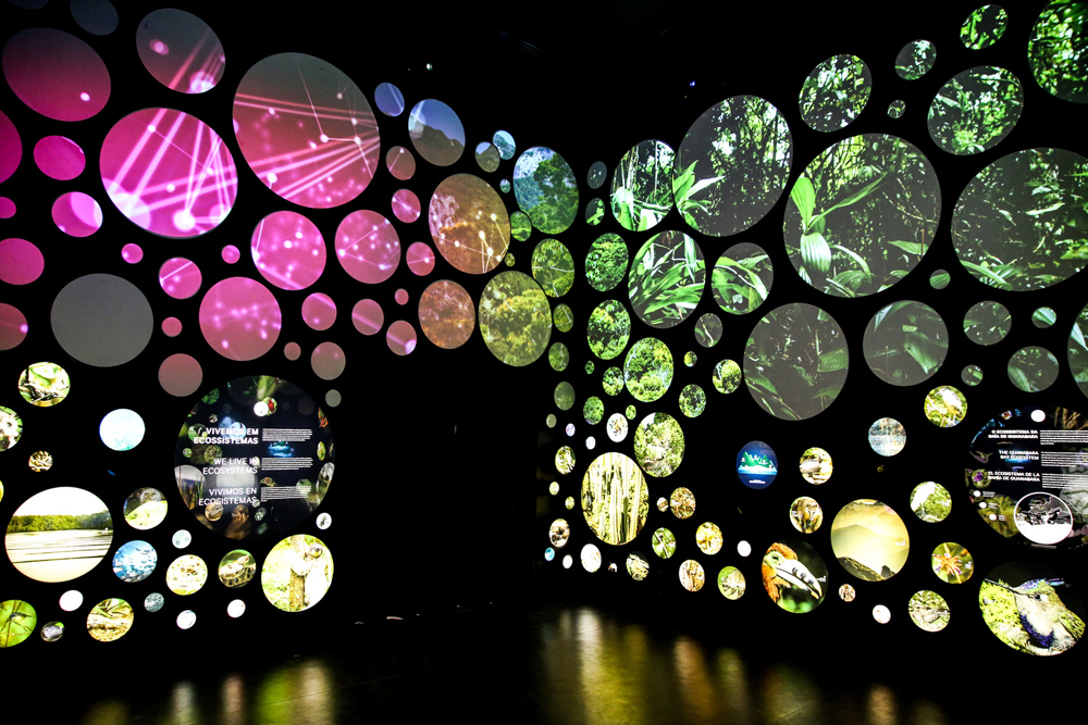 the-museum-of-tomorrow_8